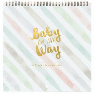 baby on the way calendar