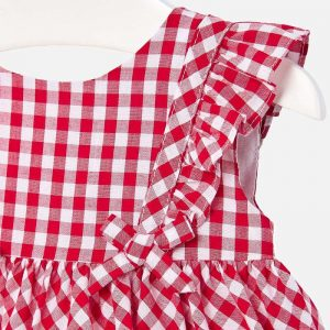 may Gingham dress cp
